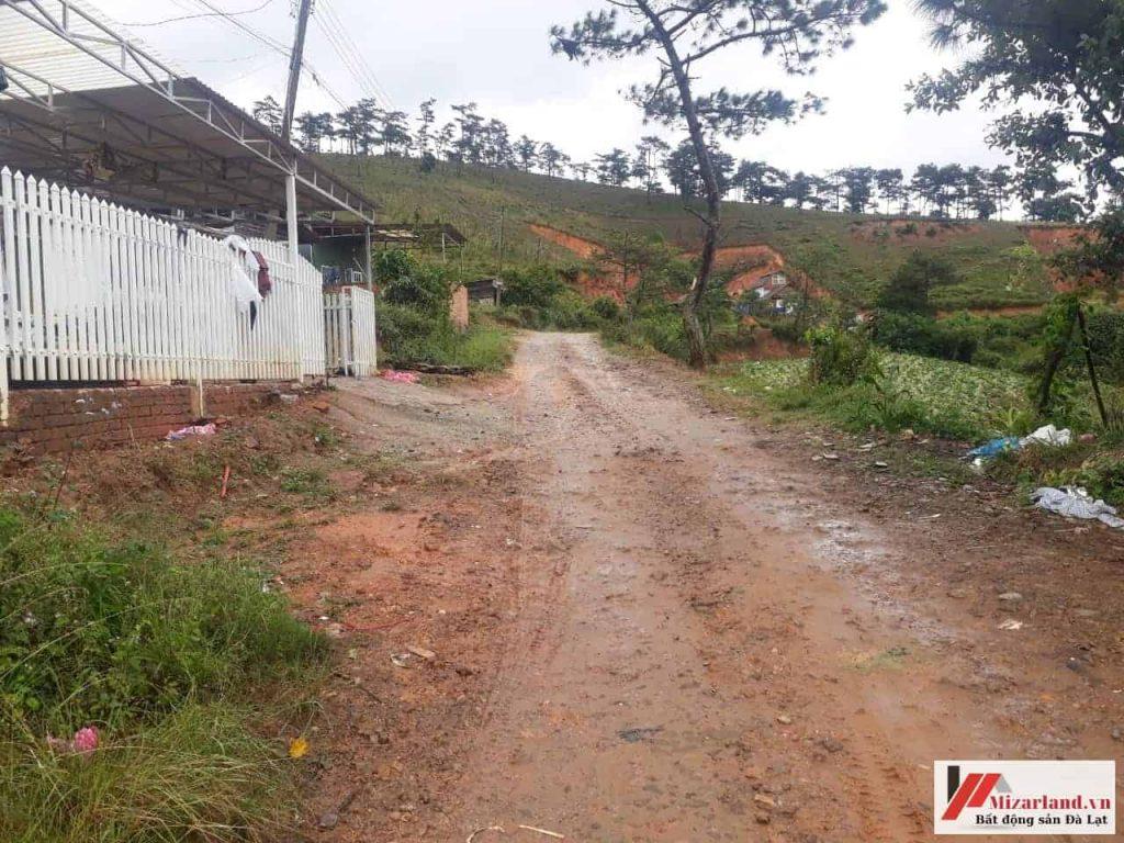 Bán đất nông nghiệp phường 7
