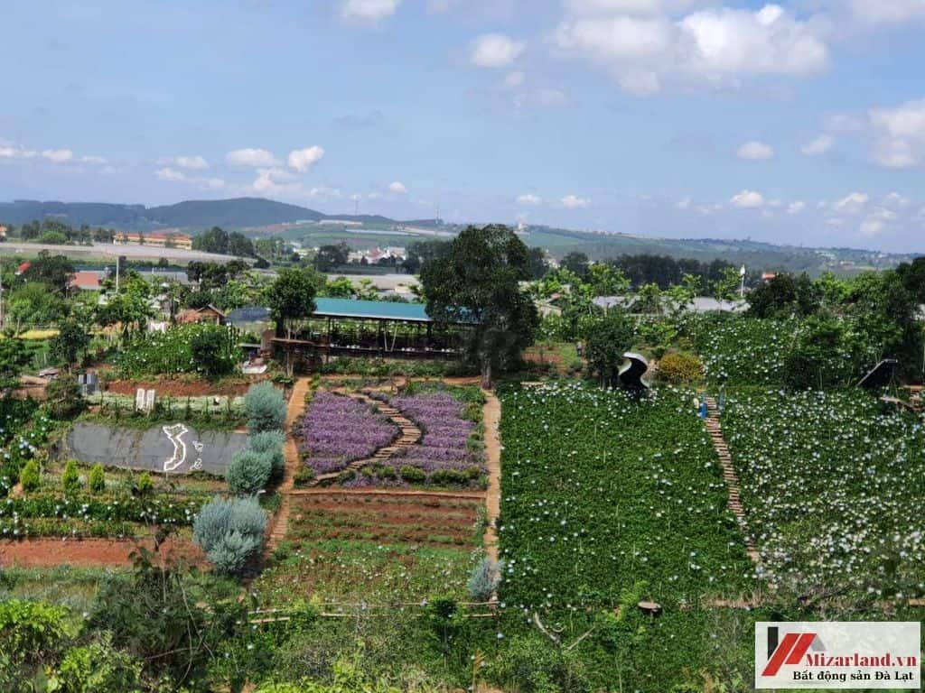 Đất Thành Phố Đà Lạt 16.000M2 Tại Xã Tà Nung