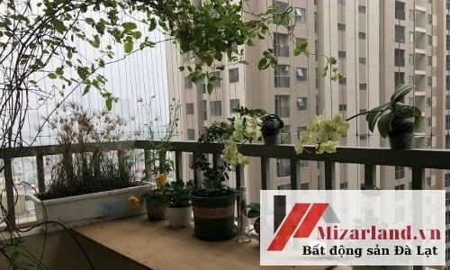 Bán chung cư Tòa D, căn hoa hậu to, đẹp nhất toàn khu. Đường rộng rãi, view đẹp như hình đăng thực tế