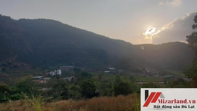 Bán Gấp Lô Đất 5040m2 Đông Thanh, Lâm Hà, Lâm Đồng