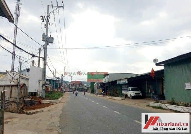 Bán nhà đường Vạn Thành, phường 5, Đà Lạt.