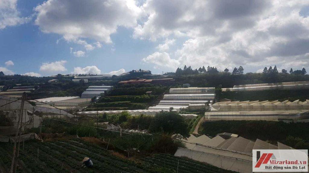 Bán đất nông nghiệp view đồi khu du lịch Làng hoa Vạn Thành