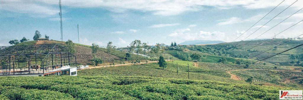 Bán đất xây dựng gần khu du lịch Đồi Chè Cầu Đất