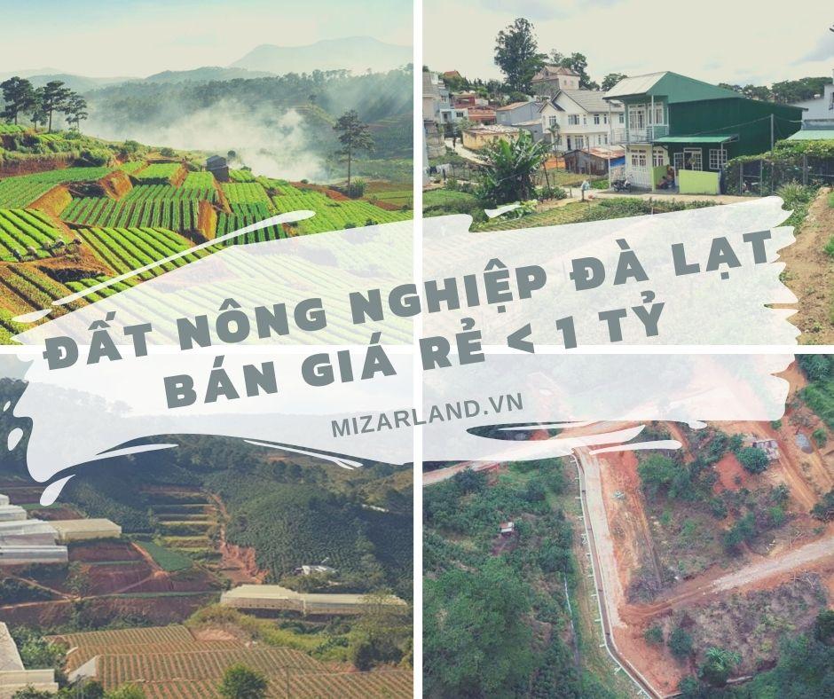 Đất nông nghiệp Đà Lạt bán